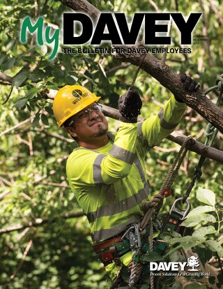 MyDavey Bulletin - November/December 2014