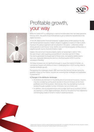 Profitable growth, your way - Report synopsis