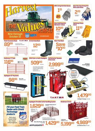 2015 October Sale
