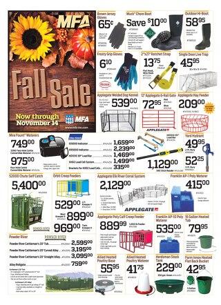 Nov Sale 2015