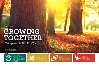 Fall 2016 Issue: Growing Together