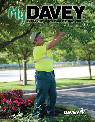MyDavey Bulletin - July/August 2014